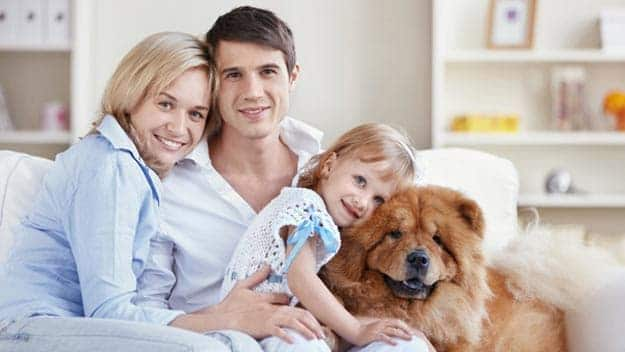 Wills & Trusts dog-young-family Direct Wills Bexhill